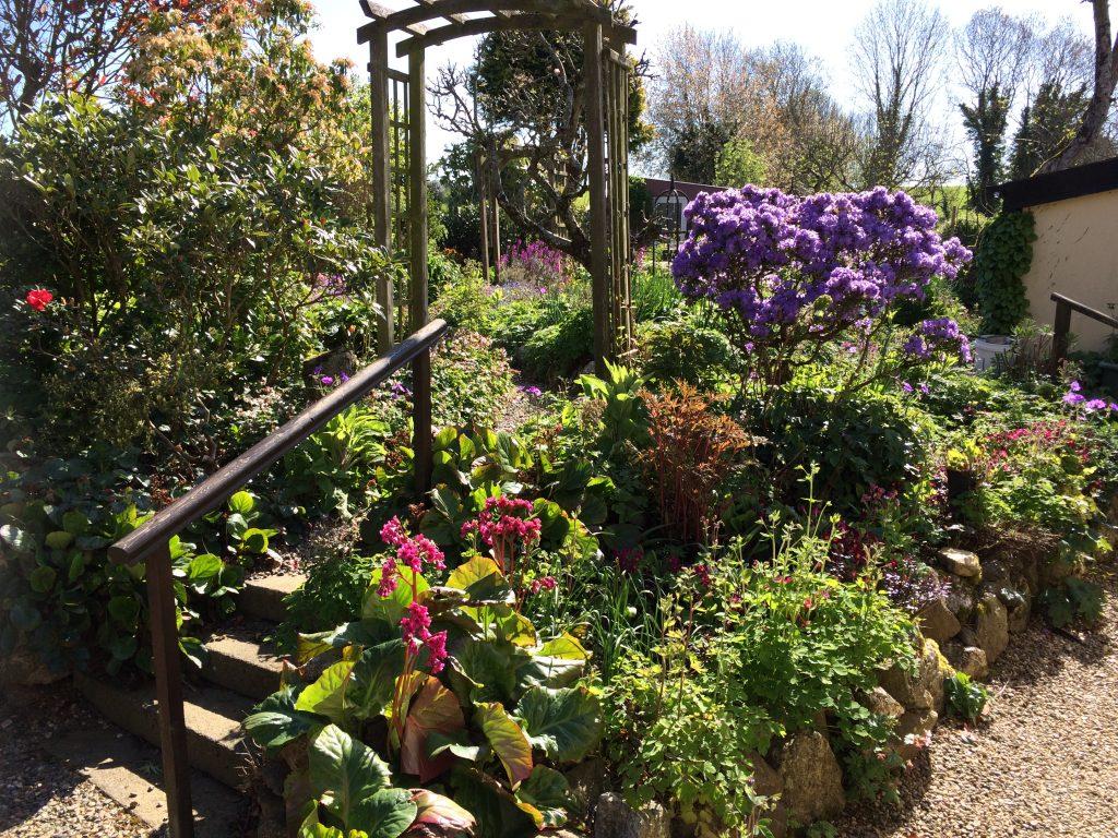 Part of Side Garden